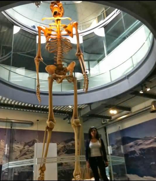 Recreación del esqueleto gigante expuesto en el Mystery Park Interlaken