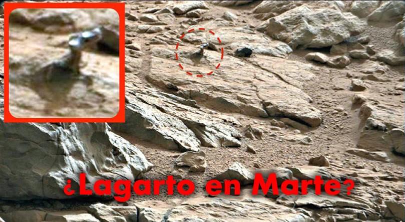 ¿Un lagarto en Marte? Fotografía de agosto de 2015