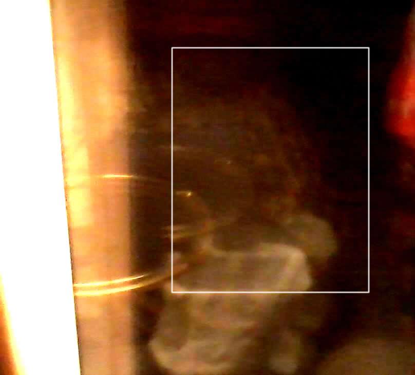 Fotografía reportada. En el recuadro blanco se puede ver una especie de cabeza de perfil y un ojo almendrado, tal como el de los grises.