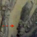 Fotografía de Marte muestra una formación impresionante y muy similar a un rostro humano.