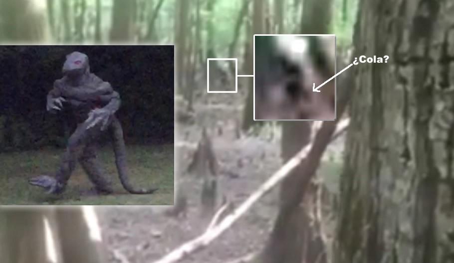 Aparece fotografía y vídeo de un hombre lagarto en Carolina del Sur (EE.UU)