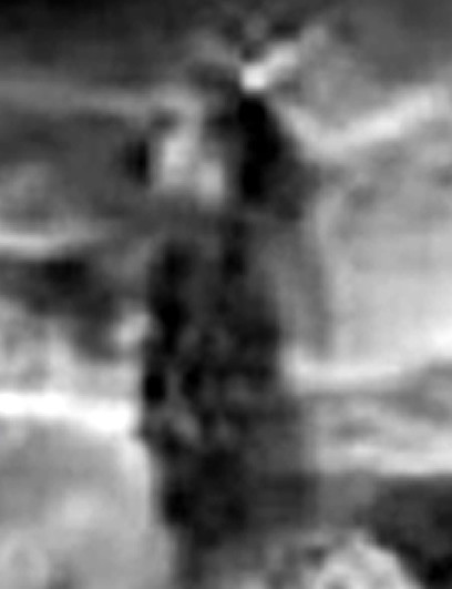 ¿Mujer en Marte?