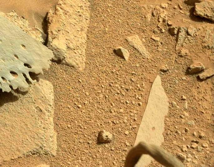 ¿Una pierna de algún ser vivo en Marte?