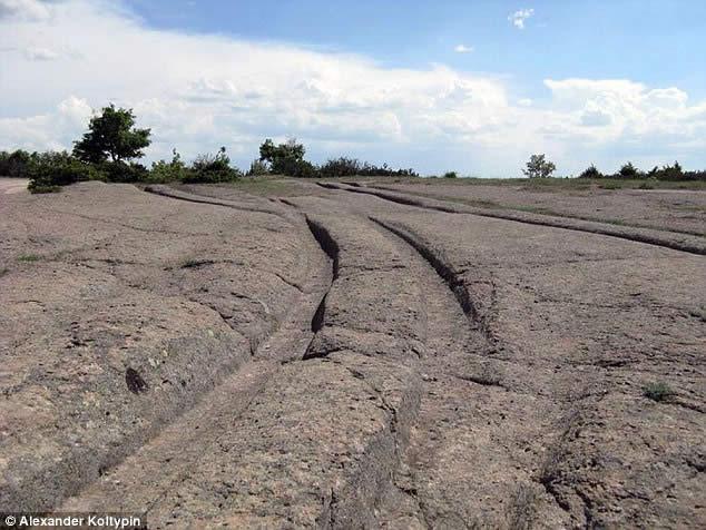 Las huellas de los vehículos de 14 millones de años de edad