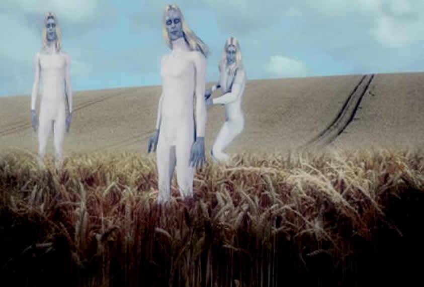 Policía afirma ver extraterrestres nórdicos inspeccionando un crop circle