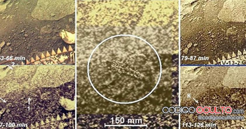 Vida extraterrestre en Venus: Desclasifican imágenes de Venus de hace 30 años