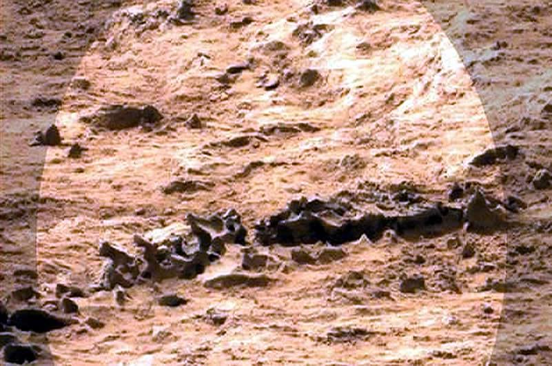 ¿Fósiles de dinosaurio y esqueletos en Marte?