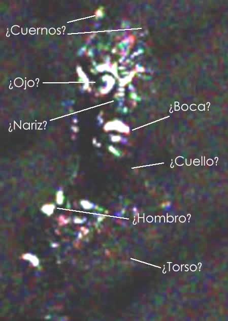 ¿Un reptiliano? Aplicando filtros se pueden ver las partes de su cuerpo.