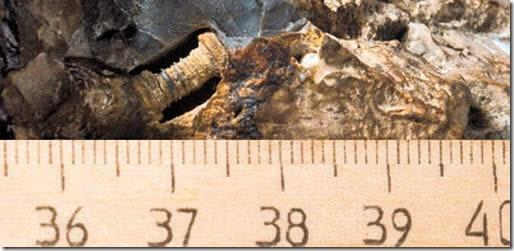 El tornillo de 300 millones años de edad incrustado en piedra