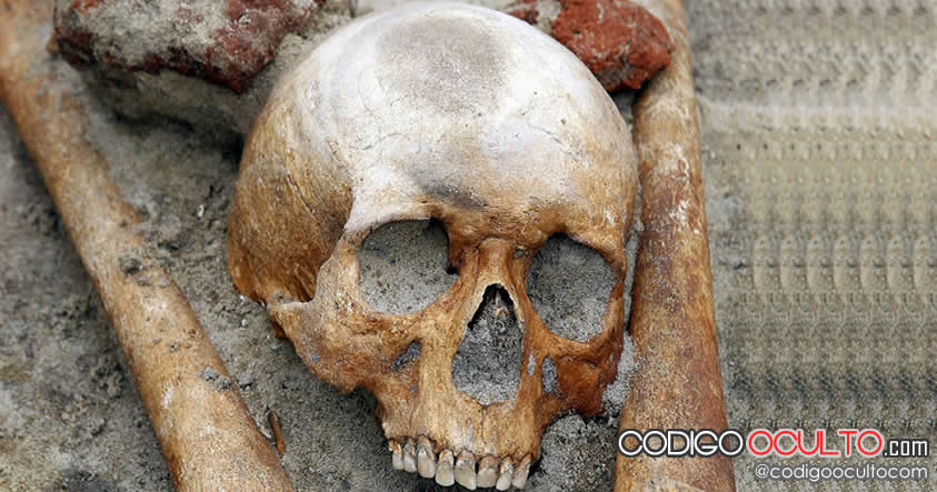 Gigantes: Científicos analizarán esqueletos encontrados en Perú y Ecuador