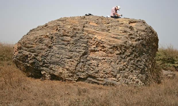 Una enorme roca encontrada en la isla de Santiago fue llevada más de 30 millas por el tsunami.