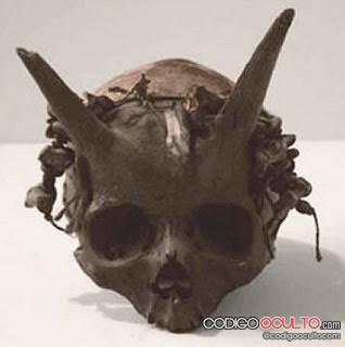Cráneo con cuernos