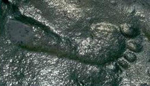 Huella humana encontrada en el periodo Pérmico, hace más de 200 millones de años.