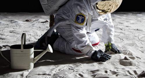 ¿Vida en la Luna?