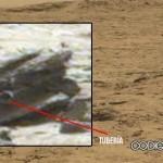 """Curiosity fotografía un """"objeto artificial"""" o artefacto en Marte"""