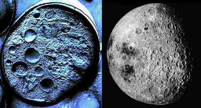 Comparación entre una Célula Madre y una La Luna