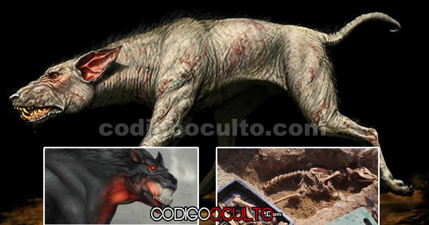 """Esqueleto de 2 metros de altura de un posible """"perro infernal"""" hallado cerca de Monasterio en Reino Unido"""