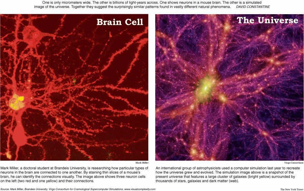 Comparación entre una Neurona y una Galaxia.