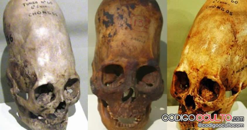 Cráneos alargados en civilizaciones antiguas podrían haber servido para la supervivencia