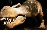 Los dinosaurios caminaban por la Tierra 10 millones de años antes de lo que se cree