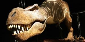 Los primeros dinosaurios caminaban por la Tierra 10 millones de años antes de lo que se cree