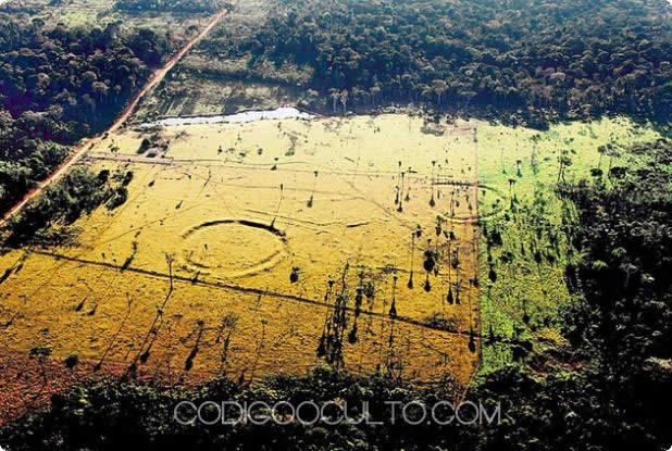 Antiguas civilizaciones avanzadas florecieron en el actual Amazonas. Nótese los círculos y líneas que atraviesan el terreno amazónico.