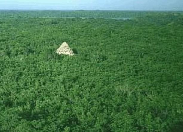 Pirámide amazónica: ¿Una vasta cultura floreció allí?