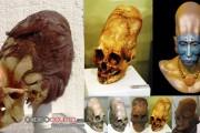 Exámenes de ADN revelan que Cráneos Paracas no son humanos
