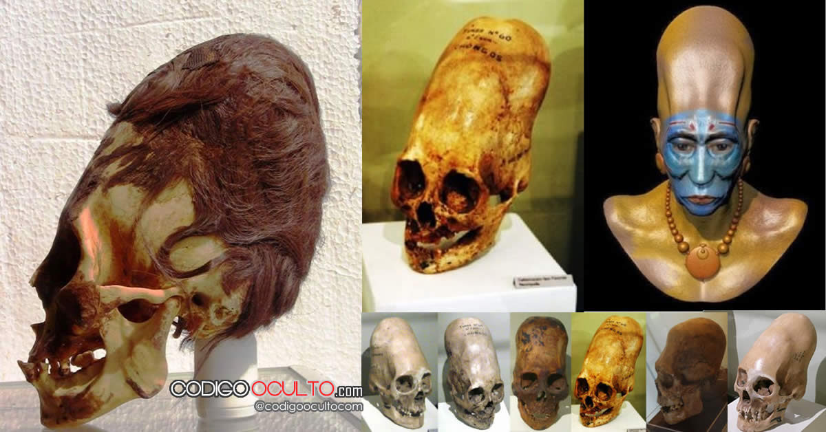 Resultados de exámenes de ADN: Cráneos Paracas no son humanos
