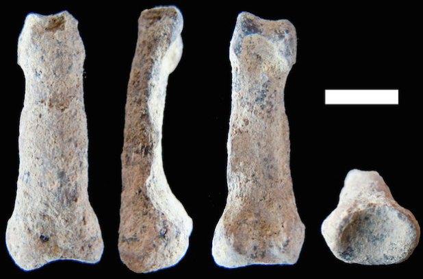 Los restos encontrados de la mano del individuo hallado en Tanzania, África.