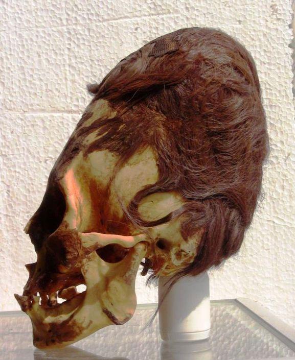 Cráneo alargado Paracas. Es impresionante la estructura del mismo, y además la presencia de cabello de color rojizo, no tan común en los pueblos antiguos sudamericanos.