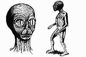 Seres de aspecto reptil han sido registrados en muchas antiguas culturas.