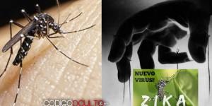 La conspiración del virus del Zika ¿El nuevo SIDA?