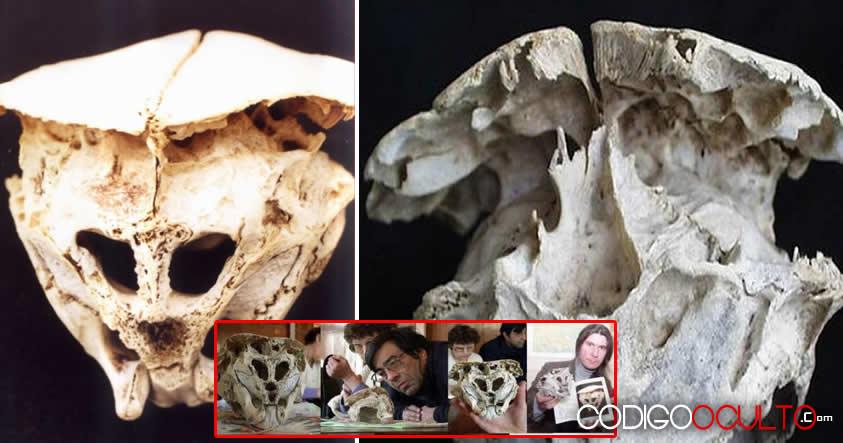 El Cráneo de Rhodope: ¿Una evidencia real de vida extraterrestre?
