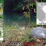 Dos extrañas esferas metálicas impactan en localidades de Vietnam