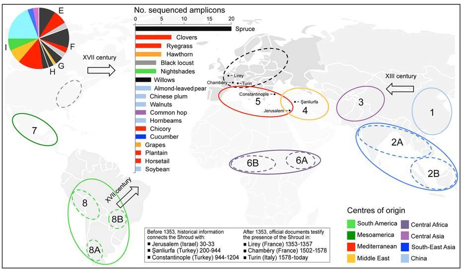 Resumen esquemático Vavilov de los centros de origen de los taxones de plantas identificadas en muestras.