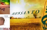 Zika: Expertos afirman que Monsanto está detrás de mayoría de casos de Microcefalia