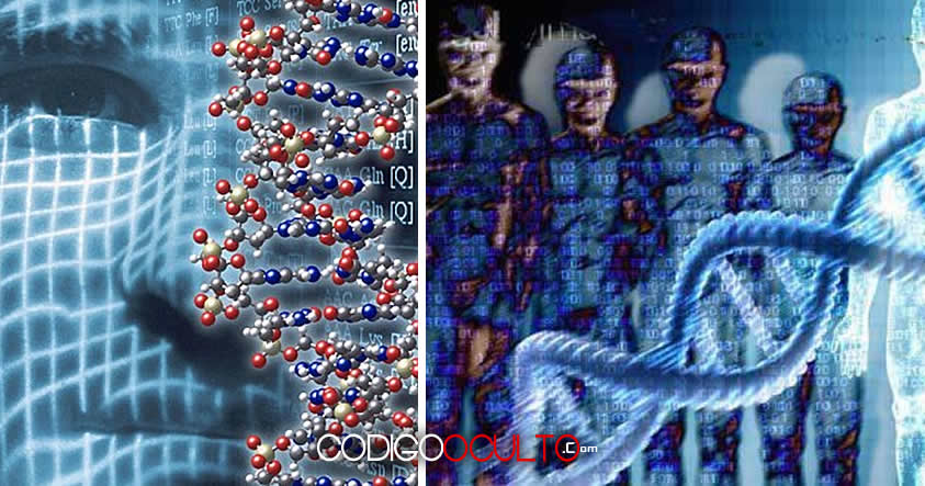 Genes extraterrestres: Partes de nuestro ADN no provienen de nuestros antepasados