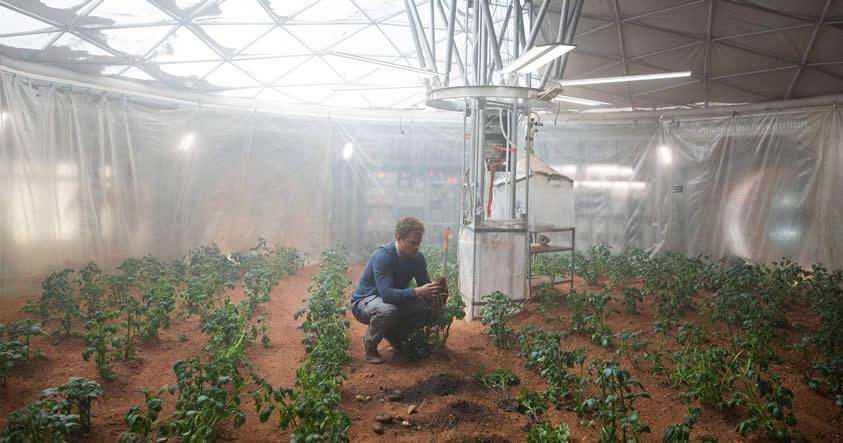 Tomates, guisantes y otros fueron cosechados en suelo equivalente a Marte