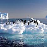 Científicos descubren un gran lago subterráneo en la Antártida que podría estar lleno de vida desconocida