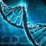 Científica afirma haber completado primera terapia génica exitosa contra el envejecimiento humano