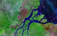 Científicos descubren un arrecife de coral de 1.000 Km. en desembocadura del río Amazonas