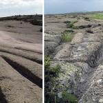 Una antigua civilización creó estas pistas en Turquía hace 12 millones de años, afirma geólogo