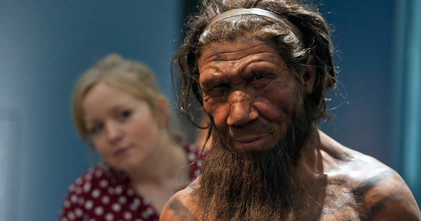 Investigan la misteriosa ausencia del «cromosoma Y» que nos mantuvo separados de los Neandertales