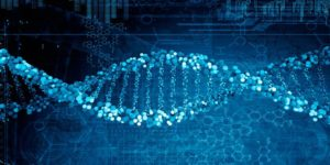 Expertos se reunen en secreto para considerar construir un genoma humano desde cero