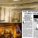 Una especie desconocida de cráneo alargado descubierta en una antigua necrópolis