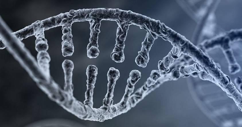 Panel federal da «luz verde» para utilizar edición de genes en seres humanos