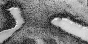 ¿Lagos y vegetación encontrados en la superficie de Marte?