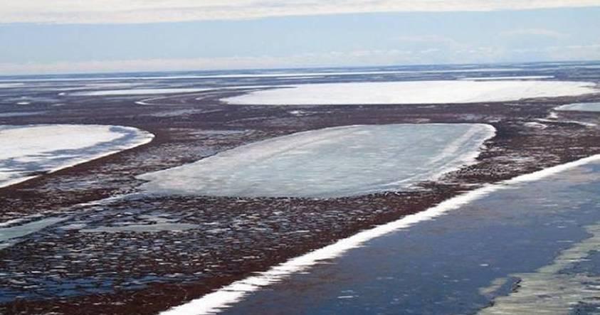Se derrite el permafrost ubicado bajo algunos lagos del Ártico