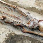 Más de una decena de «vampiros» fueron descubiertos en cementerio medieval de Polonia